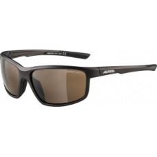 Okulary Alpina Defey Oprawka tinn mat-czarn.szklo braz